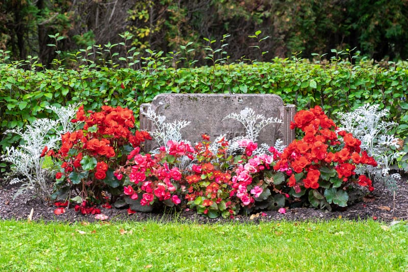 The Ins and Outs of Cemetery Insurance